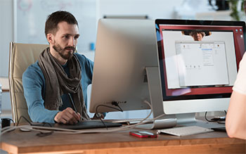 IT & Software Development